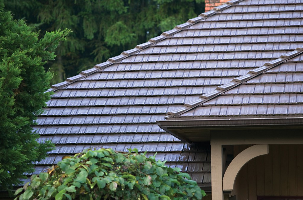 House roof selection 12